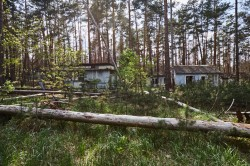 Summer camp Chernobyl Exclusion Zone